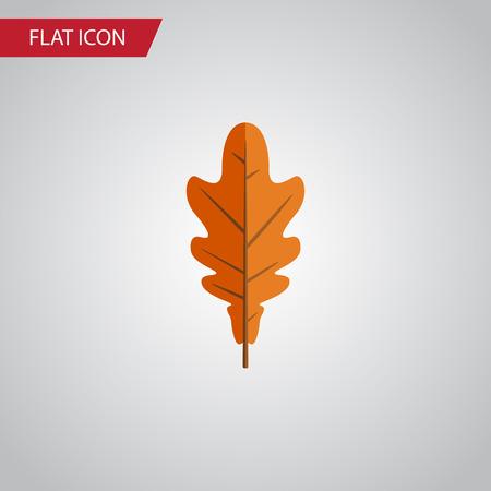Geïsoleerde Frond Flat-pictogram. Linden Vector Element kan worden gebruikt voor Linden, Frond, blad ontwerpconcept.