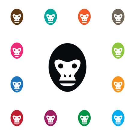 Isolated Orangutan Icon. Baboon Vector Element Can Be Used For Orangutan, Monkey, Baboon Design Concept.