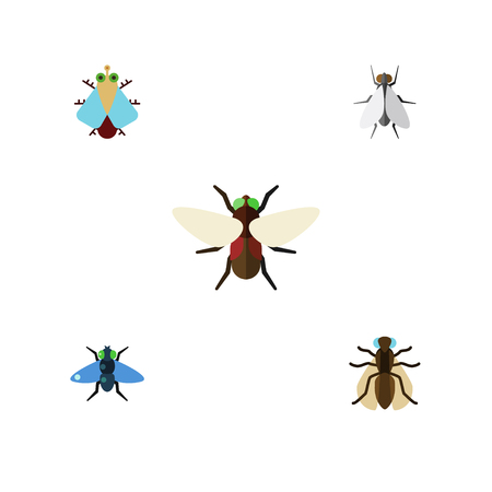 Flat Icon Fly Set Of Dung, Tiny, Bluebottle And Other Vector Objects. Also Includes Fly, Insect, Hum Elements.