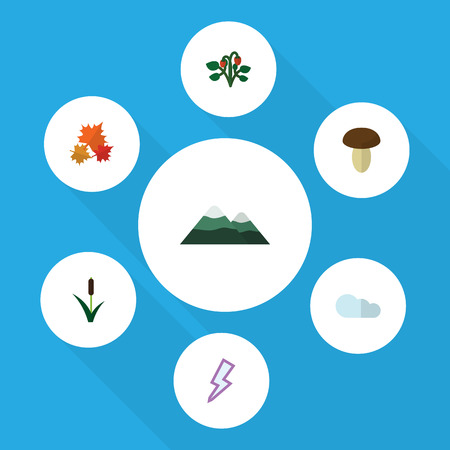 Flat Icon Ecology Set Of Berry, Champignon, Lightning And Other Vector Objects. Also Includes Pinnacle, Strawberry, Reed Elements. Illustration