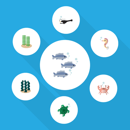 Flat Icon Marine Set Of Alga, Tortoise, Hippocampus And Other Vector Objects. Also Includes Hippocampus, Angler, Alga Elements.