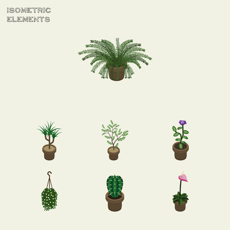Isometric Houseplant Set Of Plant, Peyote, Flower And Other Vector Objects. Also Includes Blossom, Houseplant, Cactus Elements. Illustration