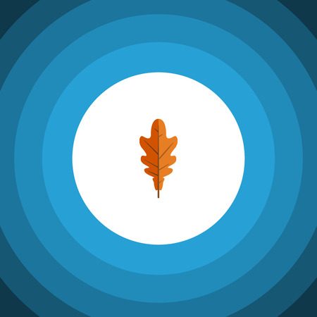 tilo: Linden Vector Element Can Be Used For Linden, Frond, Leaf Design Concept.  Isolated Frond Flat Icon. Vectores