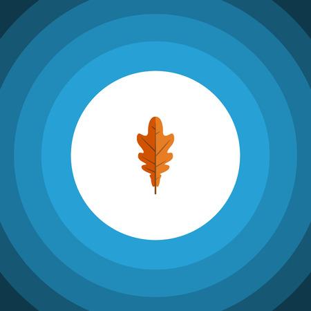 Linden Vector Element kan worden gebruikt voor Linden, Frond, blad ontwerpconcept. Geïsoleerde Frond Flat-pictogram.