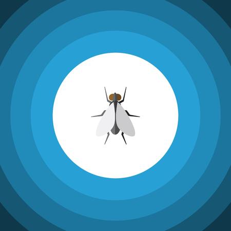 격리 된 곤충 플랫 아이콘입니다. 험 벡터 요소 곤충, 비행, 험 디자인 개념에 대 한 사용할 수 있습니다.
