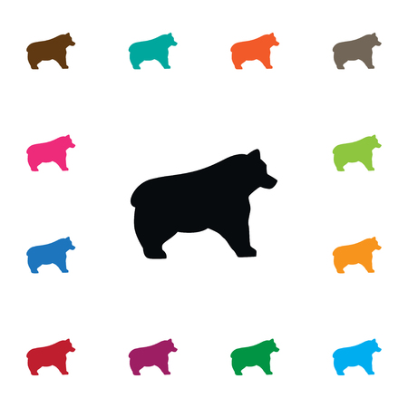 animal head: Polar Vector Element Can Be Used For Bear, Panda, Animal Design Concept.  Isolated Bear Icon.