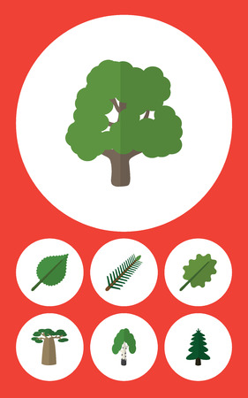 Flat Icon Nature Set Of Alder, Linden, Baobab And Other Vector Objects
