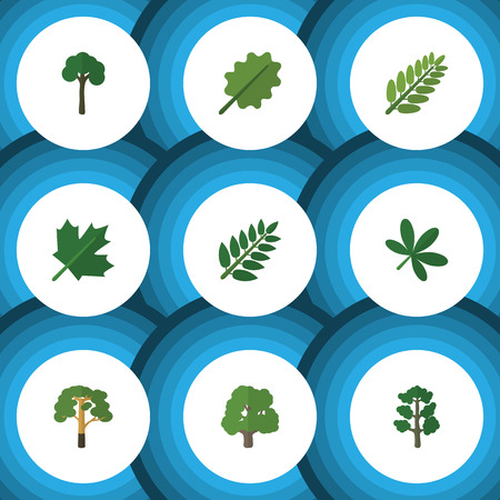 alder: Flat Icon Nature Set Of Oaken, Wood, Maple And Other Vector Objects
