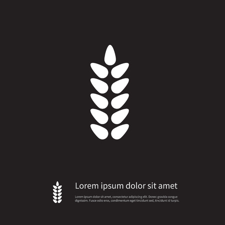 Grain Vector Element Can Be Used For Wheat, Grain, Harvest Design Concept. Isolated Wheat Icon. Vector Illustration