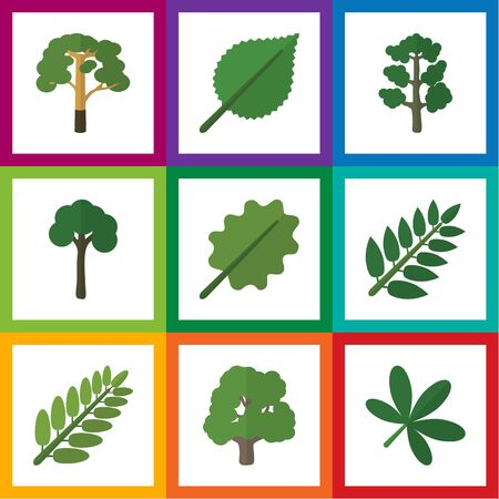 alder: Flat Icon Bio Set Of Linden, Leaves, Maple And Other Vector Objects. Also Includes Alder, Evergreen, Tree Elements. Illustration