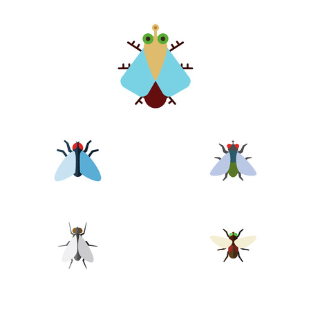Flat Icon Buzz Set Of Fly, Bluebottle, Housefly And Other Vector Objects. Also Includes Housefly, Tiny, Bluebottle Elements. Illustration