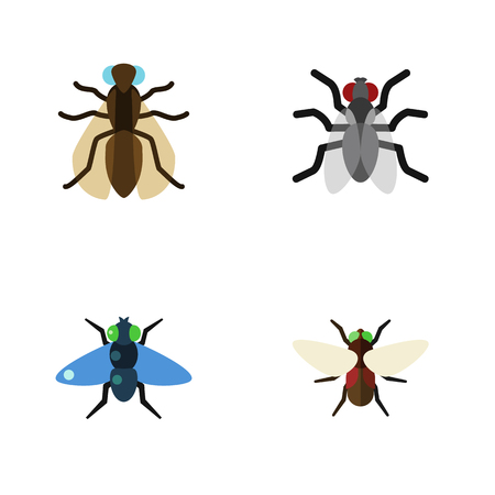 Flat Icon Buzz Set Of Dung, Gnat, Mosquito And Other Vector Objects. Also Includes Dung, Gnat, Fly Elements.