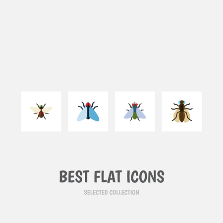 Flat Icon Housefly Set Of Mosquito, Bluebottle, Housefly And Other Vector Objects. Also Includes Insect, Dung, Housefly Elements. Illustration