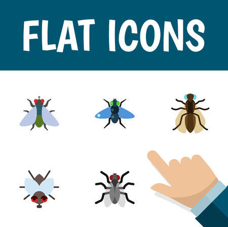 Flat Icon Housefly Set Of Fly, Gnat, Dung And Other Vector Objects. Also Includes Buzz, Hum, Mosquito Elements. Zdjęcie Seryjne - 84163005