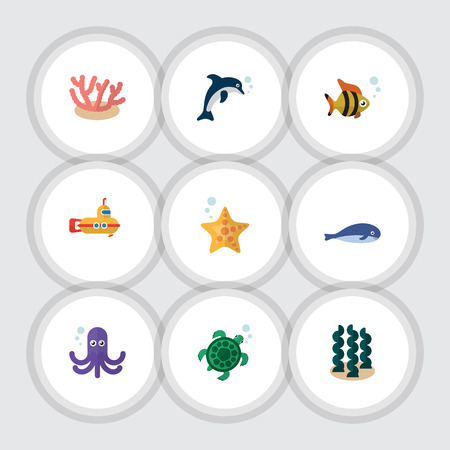 Flat Icon Nature Set Of Alga, Sea Star, Algae And Other Vector Objects. Also Includes Cachalot, Underwater, Sea Elements. Stock Vector - 84290377