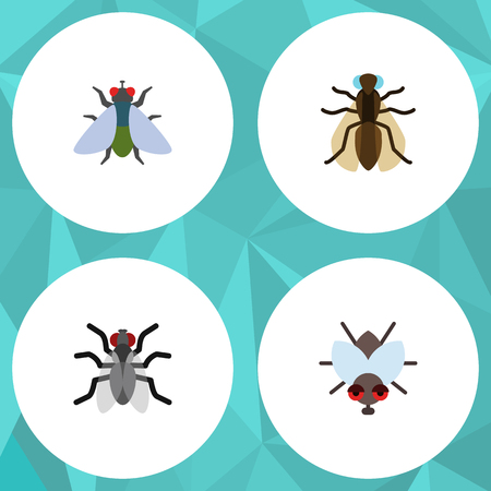 Flat Icon Fly Set Of Mosquito, Fly, Gnat And Other Vector Objects. Also Includes Buzz, Insect, Fly Elements.