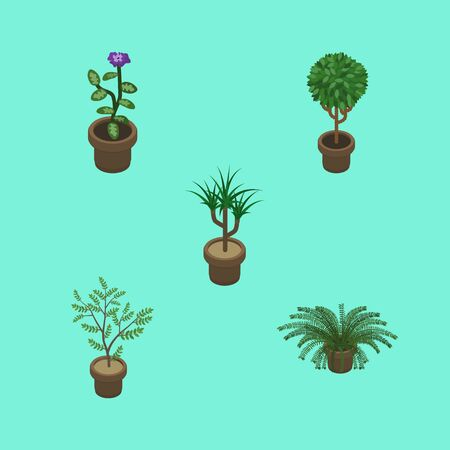 Isometric Flower Set Of Tree, Plant, Fern And Other Vector Objects. Also Includes Flower, Plant, Pot Elements.