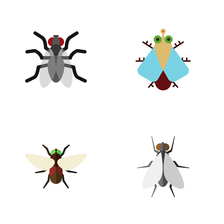 Flat Icon Buzz Set Of Gnat, Hum, Tiny And Other Vector Objects. Also Includes Hum, Fly, Housefly Elements. Illustration