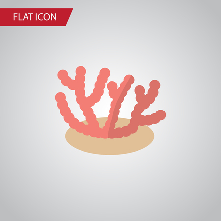 Isolated Corals Flat Icon. Algae Vector Element Can Be Used For Algae, Coral, Seaweed Design Concept. Çizim
