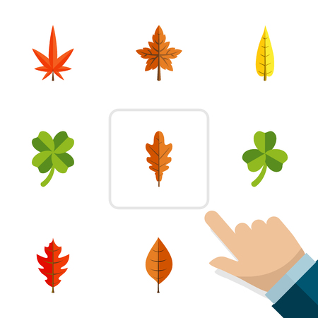 Flat Icon Maple Set Of Leaf, Maple, Alder And Other Vector Objects. Also Includes Maple, Frond, Aspen Elements.