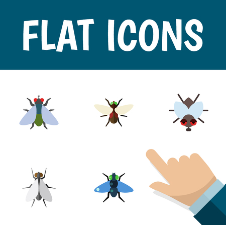 Flat Icon Housefly Set Of Bluebottle, Dung, Hum And Other Vector Objects. Also Includes Bluebottle, Insect, Hum Elements.