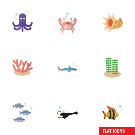 Flat icon sea set of shark, seashell, algae and other vector objects. Also includes cockleshell, gray, tuna elements. Stock Vector - 84654898
