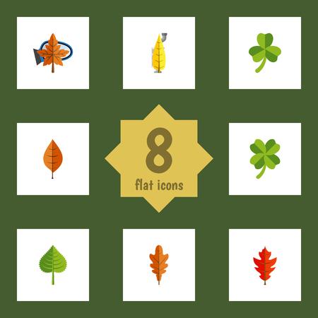 Flat Icon Leaves Set van hickory, gebladerte, Linden en andere vectorobjecten. Bevat ook varenblad, gebladerte, Linden-elementen.