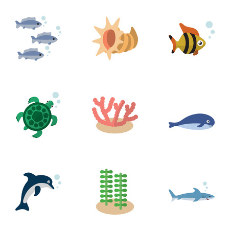 Flat Icon Sea Set Of Seafood, Algae, Cachalot And Other Vector Objects. Also Includes Scallop, Dolphin, Playful Elements.