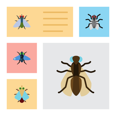 Flat Icon Housefly Set Of Gnat, Fly, Mosquito And Other Vector Objects. Also Includes Housefly, Tiny, Bluebottle Elements.