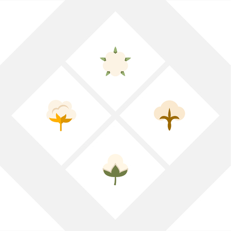 boll: Flat Icon Fiber Set Of Flower, Cotton, Fluffy And Other Vector Objects. Also Includes Fiber, Cotton, Organic Elements.