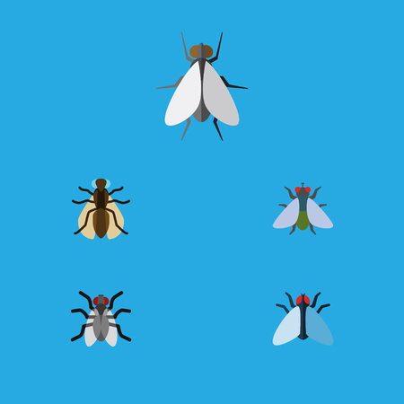 Flat Icon Fly Set Of Mosquito, Gnat, Hum And Other Vector Objects