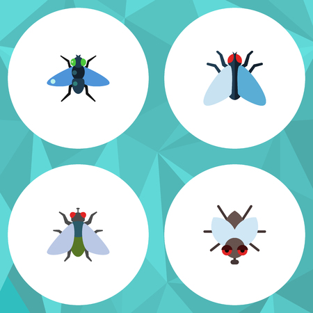 Flat Icon Buzz Set Of Dung, Fly, Buzz And Other Vector Objects. Also Includes Housefly, Insect, Bluebottle Elements.