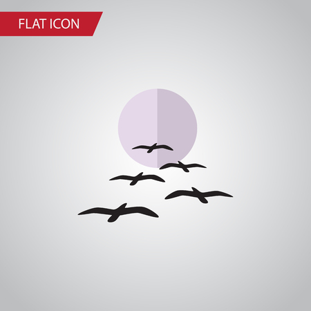 Isolated Birds Flat Icon. Gull Vector Element Can Be Used For Gull, Bird, Moon Design Concept.