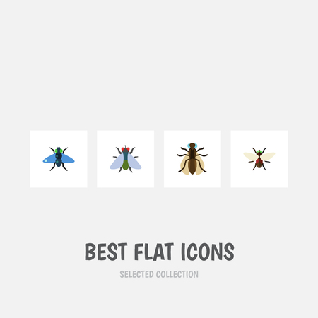 Flat Icon Fly Set Of Dung, Fly, Mosquito And Other Vector Objects. Also Includes Dung, Bluebottle, Buzz Elements.