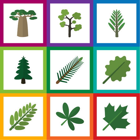 Flat Icon Bio Set Of Leaves, Spruce Leaves, Alder And Other Objects Including Alder, Park, Maple Elements.