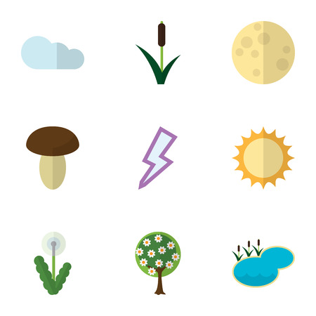 Flat Icon Bio Set Of Cattail, Overcast, Champignon And Other Vector Objects. Illustration