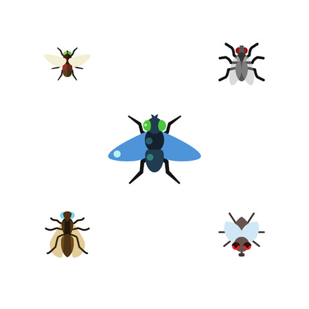 Flat Icon Housefly Set Of Gnat, Dung, Mosquito And Other Vector Objects.