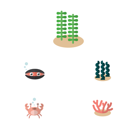 Flat Icon Sea Set Of Algae, Scallop, Seaweed And Other Vector Objects Illustration