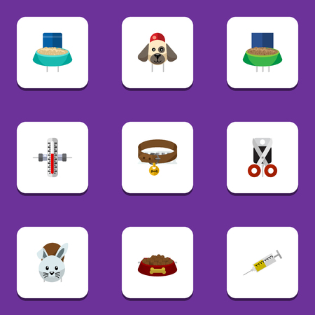 lapin: Flat icon pets set of vaccine, shears, rabbit meal other objects.