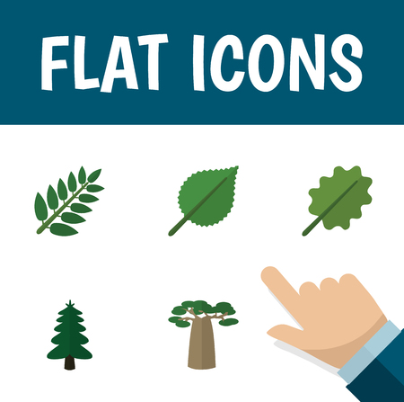 alder: Flat icon nature set of linden, Acacia Leaf, park and other objects. Illustration