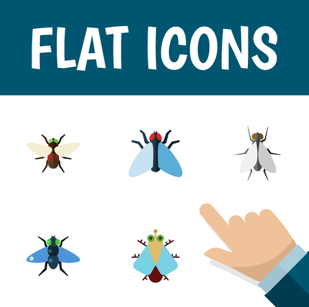 Flat Icon Housefly Set Of Housefly, Bluebottle, Dung And Other Vector Objects
