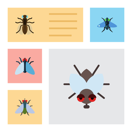Flat Icon Buzz Set Of Fly, Mosquito, Dung And Other Vector Objects. Also Includes Dung, Fly, Housefly Elements. Illustration