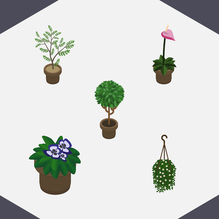 Isometric Houseplant Set Of Fern, Grower, Tree And Other Vector Objects. Also Includes Houseplant, Flowerpot, Plant Elements. Illustration