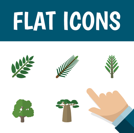 Flat Icon Ecology Set Of Jungle, Decoration Tree, Acacia Leaf And Other Vector Objects. Also Includes Willow, Acacia, Leaf Elements.