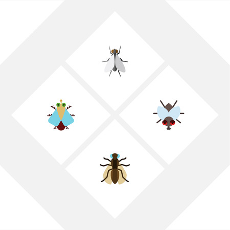 Flat Icon Fly Set Of Buzz, Hum, Tiny And Other Objects, Includes Mosquito, Tiny, Gnat Elements.