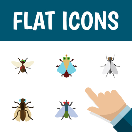 Flat Icon Housefly Set Of Bluebottle, Tiny, Fly And Other Objects, Includes Tiny, Insect, Housefly Elements.