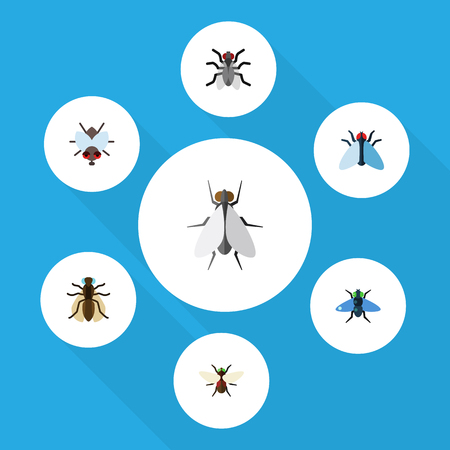 Flat Icon Fly Set Of Bluebottle, Buzz, Mosquito And Other Objects Includes Mosquito, Housefly, Fly Elements.