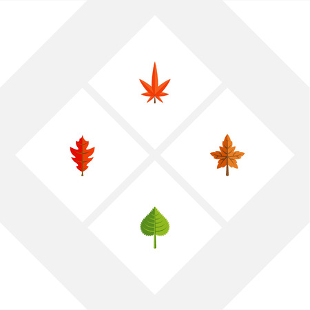 alder: Flat Icon Leaf Set Of Aspen, Hickory, Frond And Other Vector Objects. Also Includes Frond, Linden, Leaf Elements.