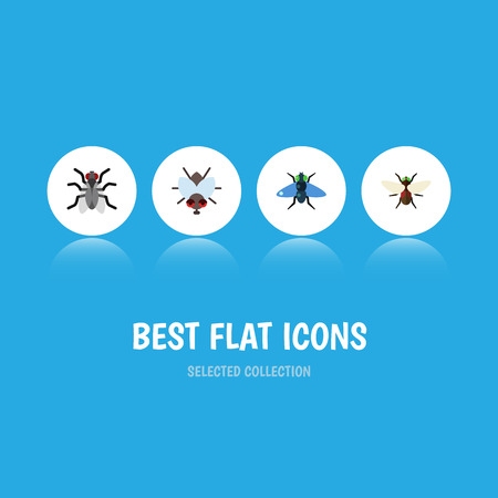 Flat Icon Fly Set Of Buzz, Gnat, Bluebottle And Other Vector Objects. Also Includes Buzz, Fly, Insect Elements.