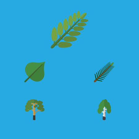 Flat Icon Natural Set Of Spruce Leaves, Leaves, Timber And Other Vector Objects